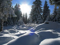 Winter in austria Royalty Free Stock Images