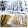 Winter and autumn panorama of the forest road one same place Stock Images