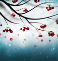 Winter background abstract with rowan eps Royalty Free Stock Images