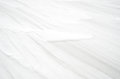 Winter background - snow texture Stock Image