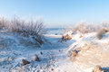 Winter beach of Baltic sea Royalty Free Stock Photography