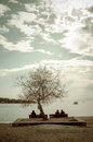 Winter beach scene people silhouettes enjoying sun sitting under old tree Stock Images