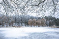 Winter beautiful day in park near frozen lake Royalty Free Stock Photo