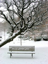 Winter bench Royalty Free Stock Images