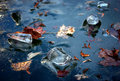 Winter blue ice and maple leaves frozen in river Stock Images