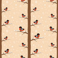 Winter bullfinch bird seamless pattern Royalty Free Stock Images