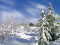 Winter Cabin Royalty Free Stock Image