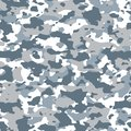 Winter camouflage pattern. Seamless texture illustration