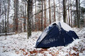 Winter camping in the forest during Royalty Free Stock Images