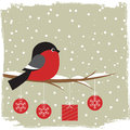 Winter card with bullfinch Stock Images