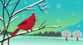 Winter cardinal landscape of a bird sitting on a tree branch eps Stock Photos