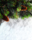 Winter Christmas background. Christmas boarder with fir tree branch with cones on the snow. Winter holidays concept. Royalty Free Stock Photo