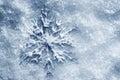 Winter, Christmas background. Snowflake on snow Royalty Free Stock Photo