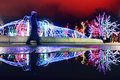 Winter Christmas Light Reflect...