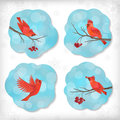 Winter christmas sticker birds rowan tree branches vector set of stickers with waxwing berry snowflakes bokeh on cloud shapes blue Royalty Free Stock Images