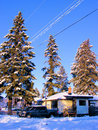 Winter in city trees cars and houses covered by snow Royalty Free Stock Photo