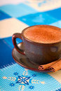 Winter coffee with cinnamon Royalty Free Stock Photos