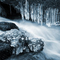 Winter creek in the national park sumava czech republic Royalty Free Stock Images