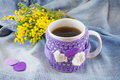 Winter cup of tea and mimosa flowers on blue denim background Royalty Free Stock Photos