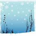 Winter design Stock Photography