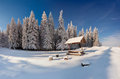 Winter fairy tale after heavy snowfall in mountain forest the Stock Photography
