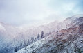 Winter fairy tale on the snow mountain in china Stock Image