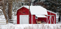 Winter farm scene a white tailed deer stands near a red barn shed in a snow covered field in northwest oho Stock Photo