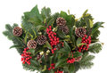 Winter fauna and christmas with red holly berries mistletoe spruce fir leaf sprigs and pine cones Stock Photography