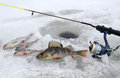 Winter fishing scenery Stock Photography