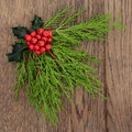 Winter flora and christmas with holly over oak background Stock Photos