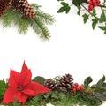Winter Flora and Fauna Border Royalty Free Stock Photo