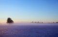 Winter fog Royalty Free Stock Photo