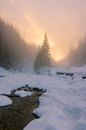 Winter foggy sunset on ice mountains river frozen at pine snowy forest Stock Images