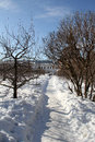 Winter footpath in a monastic garden kolomna russia Stock Image