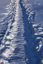 Winter footpath which was trodden by pedestrians in snow Royalty Free Stock Photography