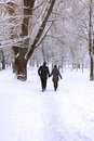 Winter forest couple in snowy Royalty Free Stock Photos