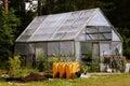 Winter garden, wheelbarrows and garden equipment Royalty Free Stock Photo