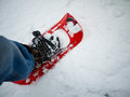Winter Hiker - Snowshoeing Stock Photos