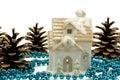 Winter Holiday Decoration