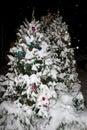 Winter holiday season background Royalty Free Stock Photo
