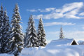 Winter idyllic morning with soft clouds and blue sky pines and cottage covered with snow Stock Images