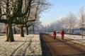 Winter Jogging Stock Photos