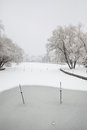 Winter lake artificial unmanned silence after the snow became white environment Royalty Free Stock Images