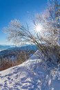 Winter landscape on a beautiful cold and crisp day in the bavarian alps Stock Photo