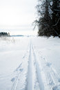 Winter landscape cross country skiing tracks snow overcast day Royalty Free Stock Photos