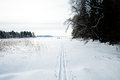 Winter landscape cross country skiing tracks snow overcast day Stock Photos