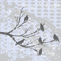 Winter landscape with crows Stock Photo