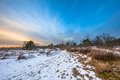 Winter landscape in Drenthe with thin layer of snow Royalty Free Stock Photo