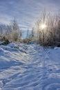 Winter Landscape In Ornans