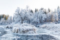 Winter landscape, river under the ice Royalty Free Stock Photo